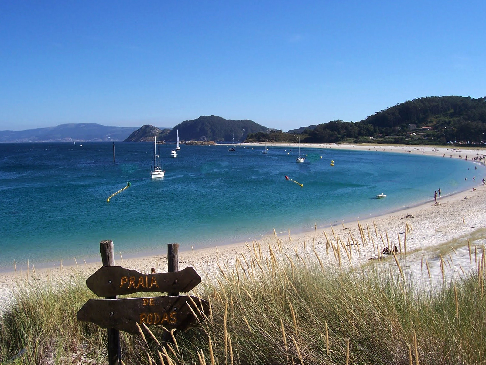 Cies islands, a natural paradise