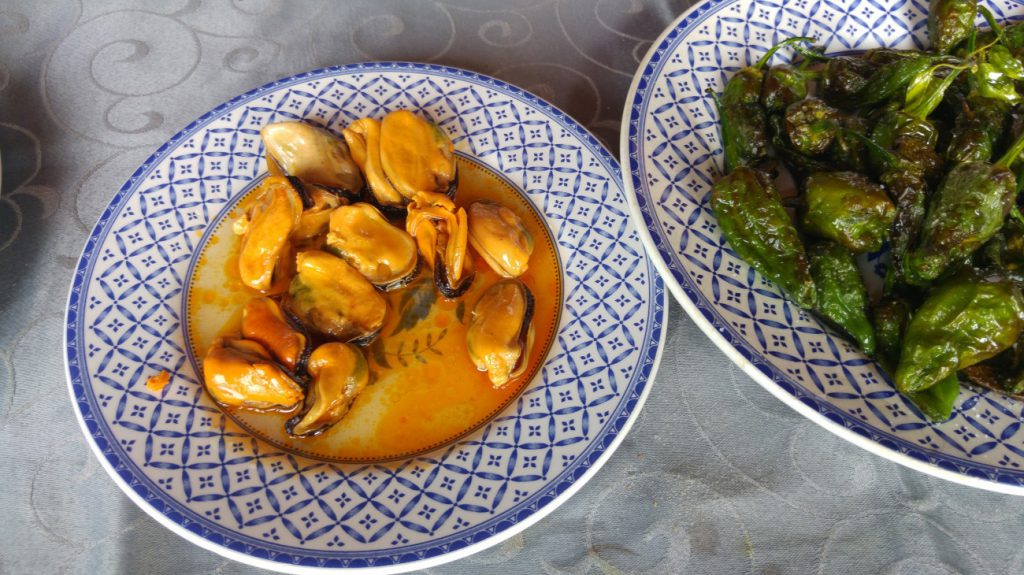 All you need to known about mussels