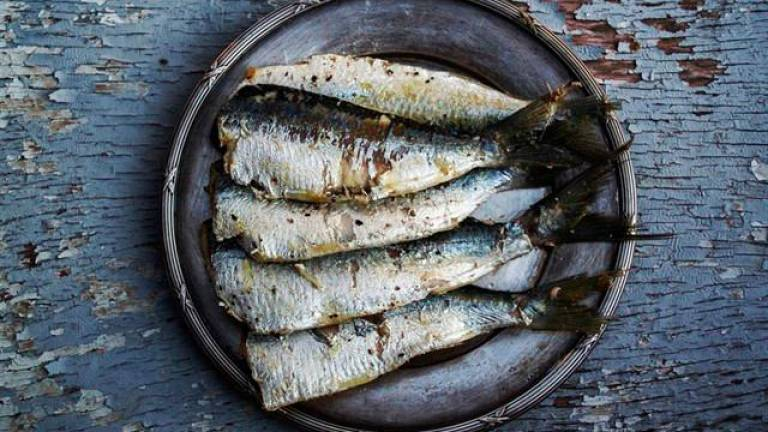 What are the fish that have the most health benefits?